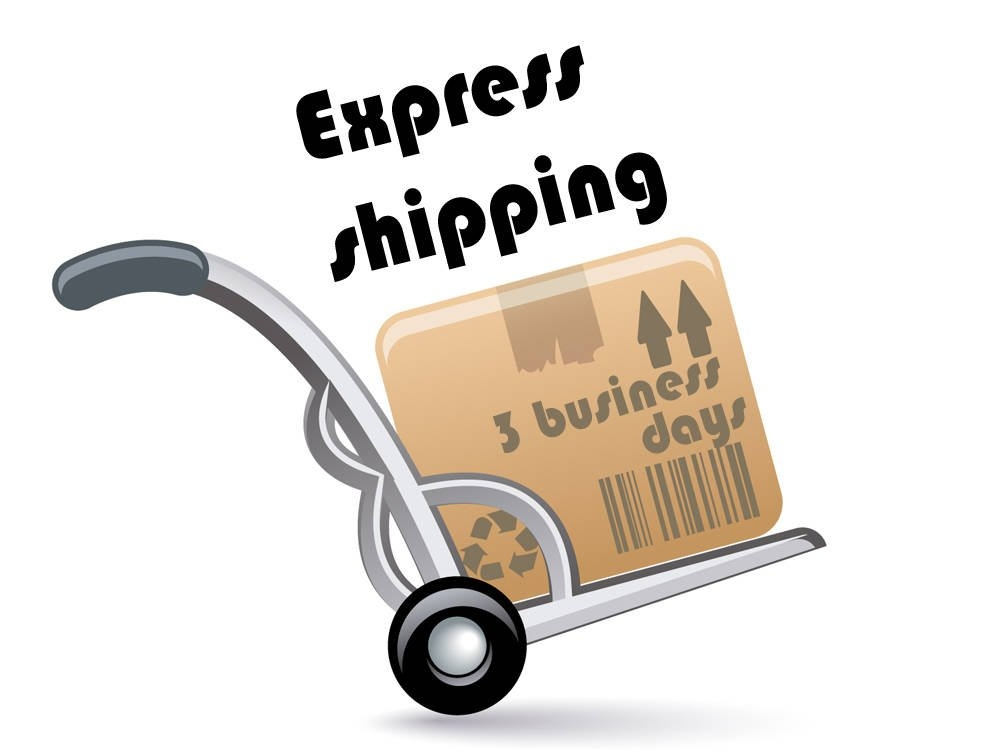 Express dostava